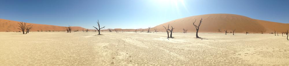 desert-namibie-afrique