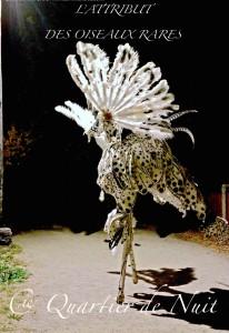 Attribut-des-oiseaux-rares-noel-bleu-guebwiller